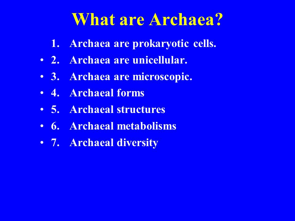 What are Archaea 1. Archaea are prokaryotic cells.