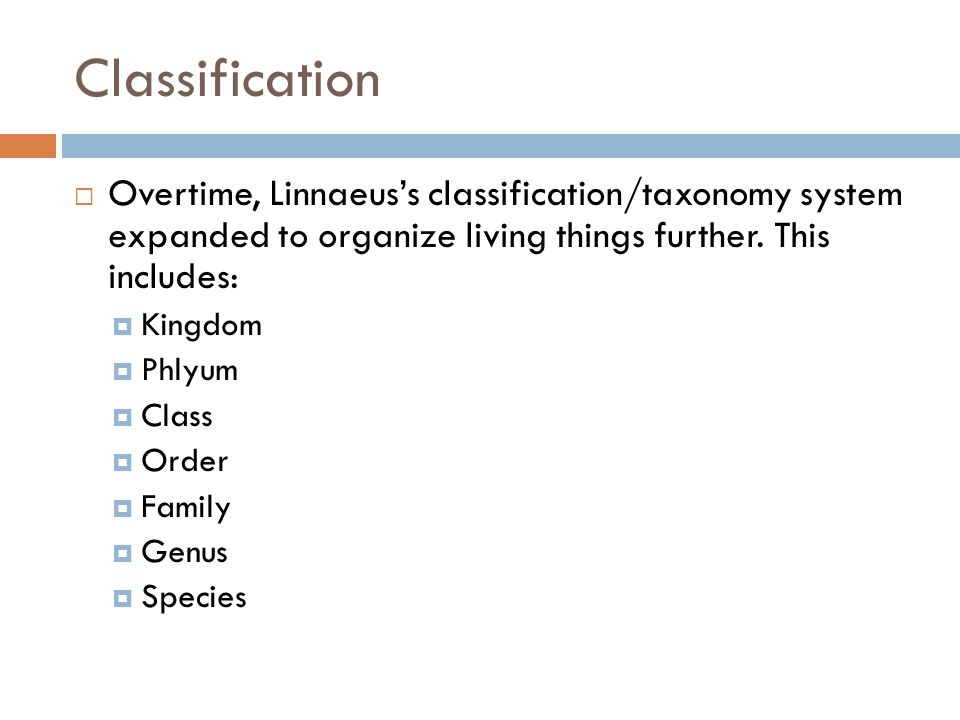 Classification Overtime, Linnaeus's classification/taxonomy system expanded to organize living things further. This includes: