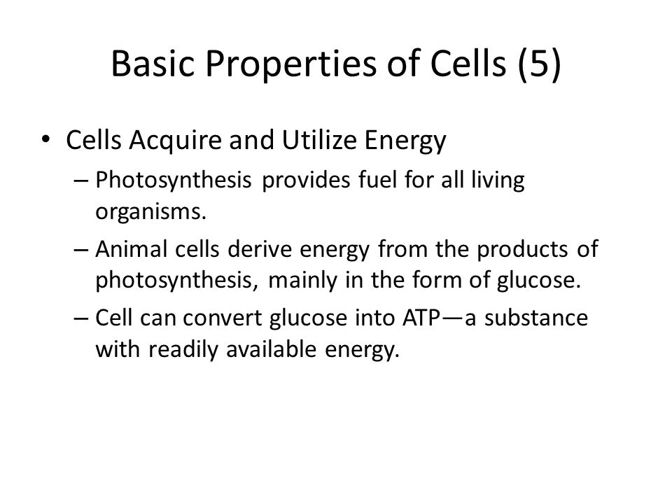 Basic Properties of Cells (5)