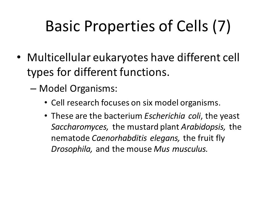 Basic Properties of Cells (7)