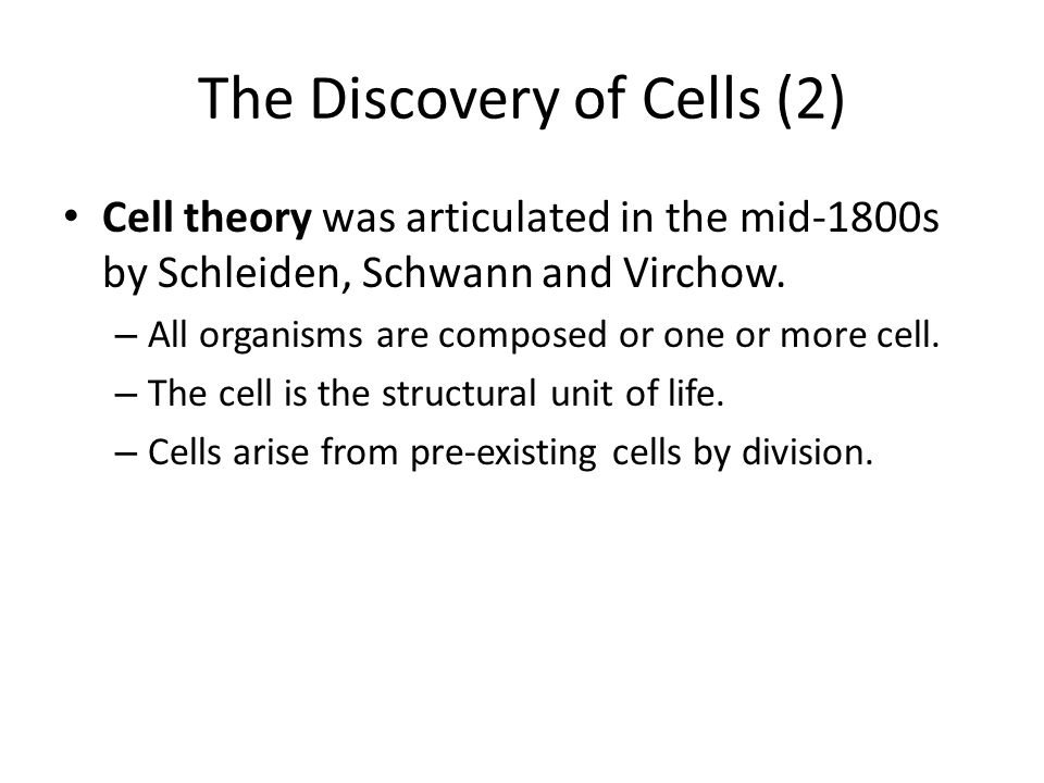 The Discovery of Cells (2)