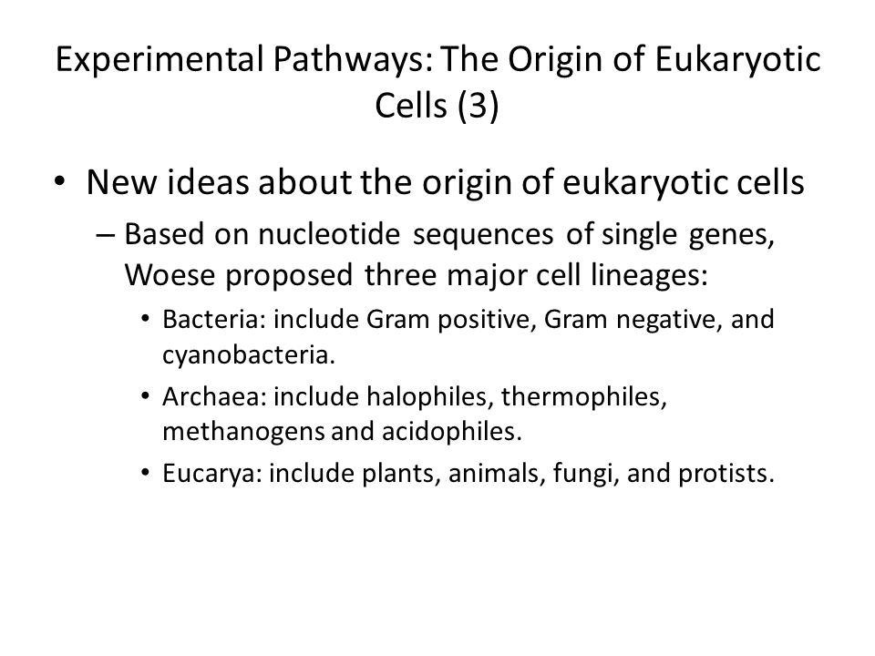 Experimental Pathways: The Origin of Eukaryotic Cells (3)