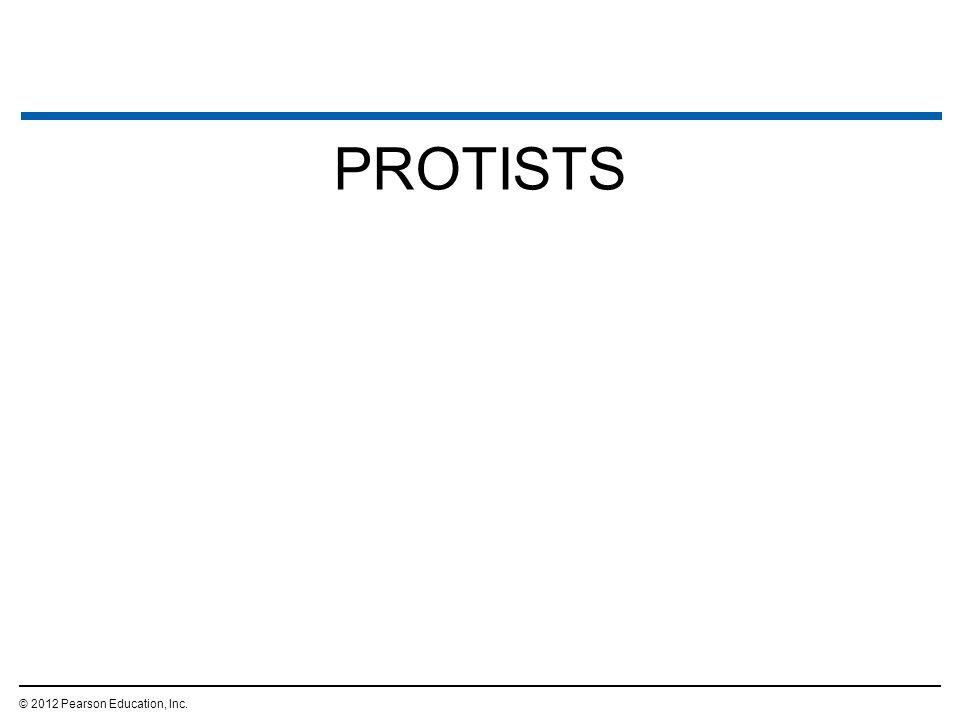 PROTISTS © 2012 Pearson Education, Inc. 74
