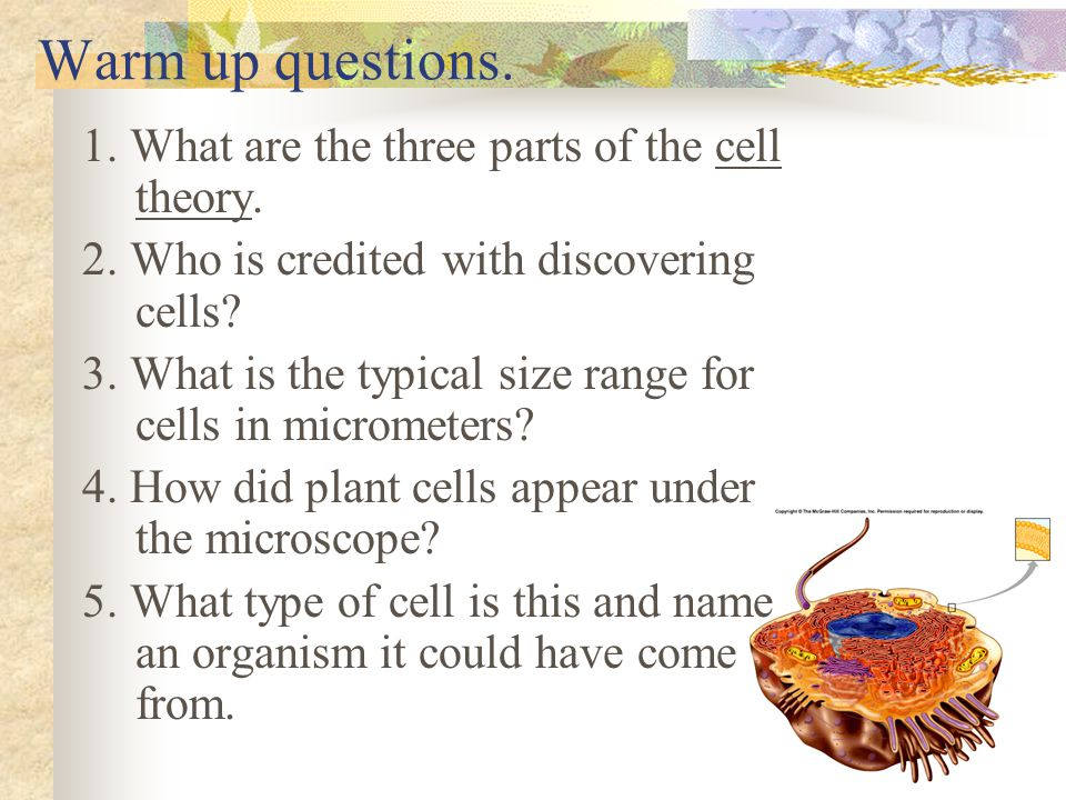 Warm up questions. 1. What are the three parts of the cell theory.