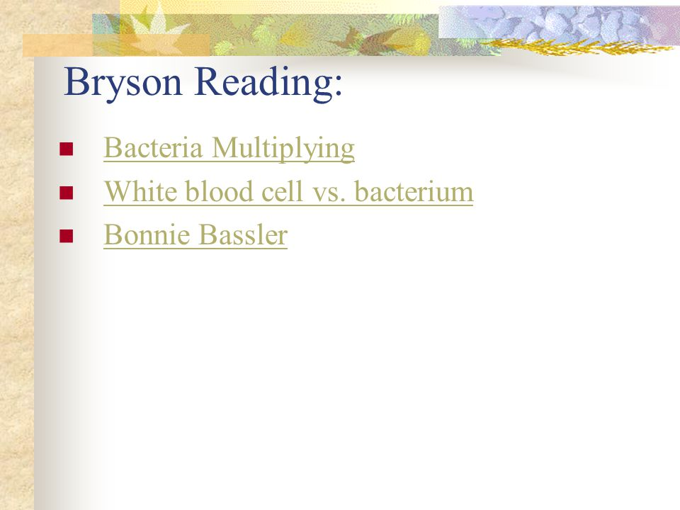 Bryson Reading: Bacteria Multiplying White blood cell vs. bacterium