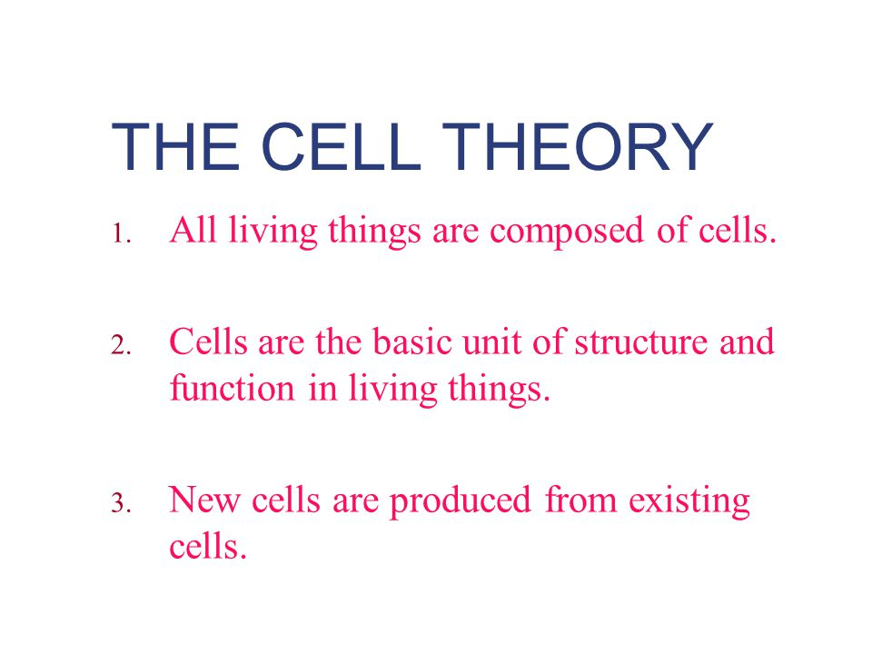THE CELL THEORY All living things are composed of cells.