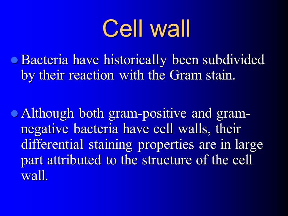 Cell wall Bacteria have historically been subdivided by their reaction with the Gram stain.