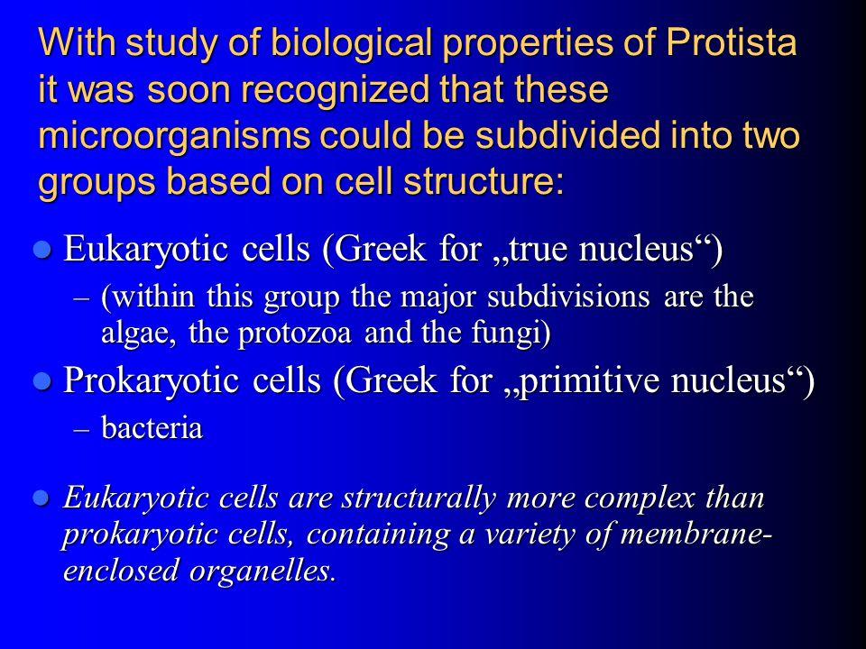 "Eukaryotic cells (Greek for ""true nucleus )"