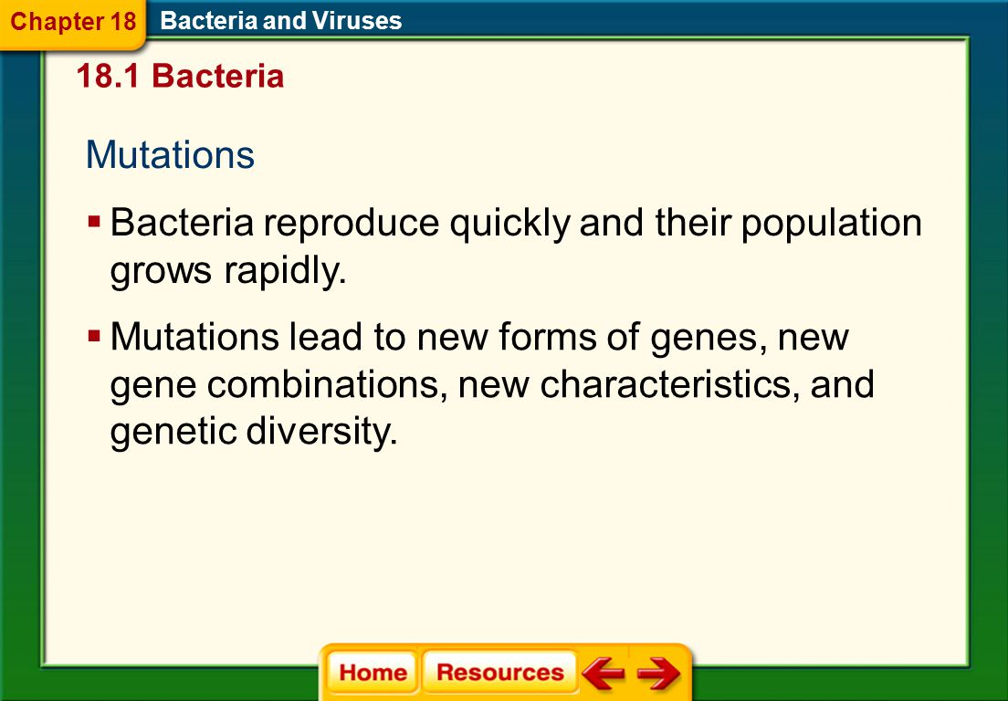 Bacteria reproduce quickly and their population grows rapidly.