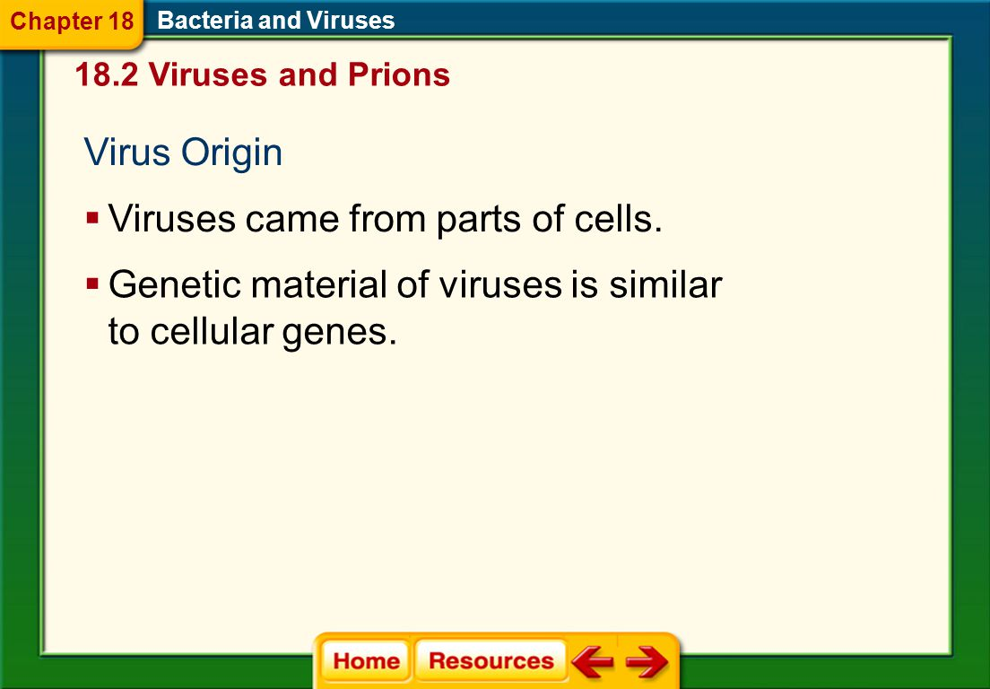 Viruses came from parts of cells.