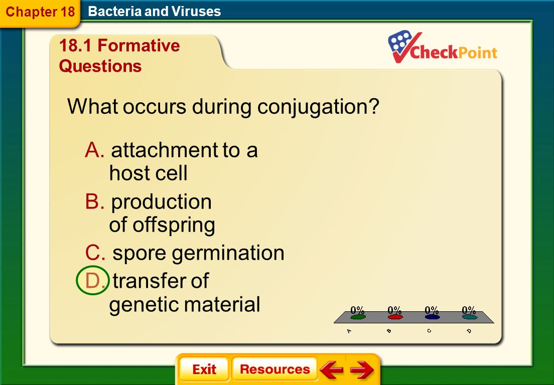 What occurs during conjugation