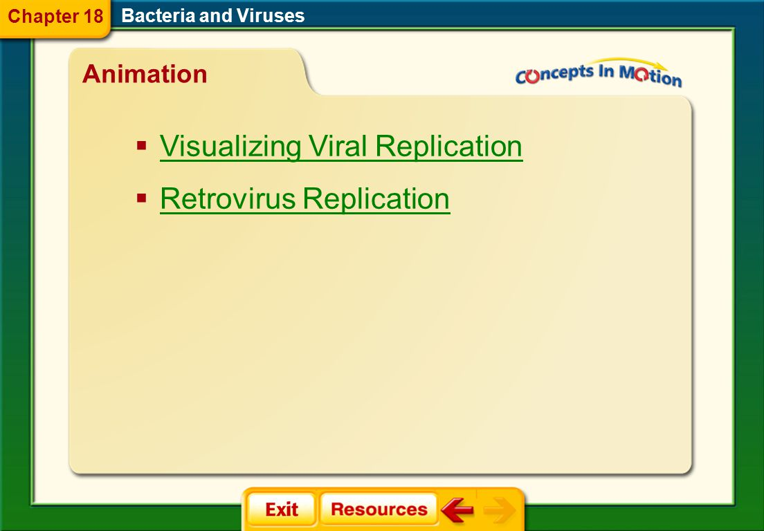 Visualizing Viral Replication Retrovirus Replication