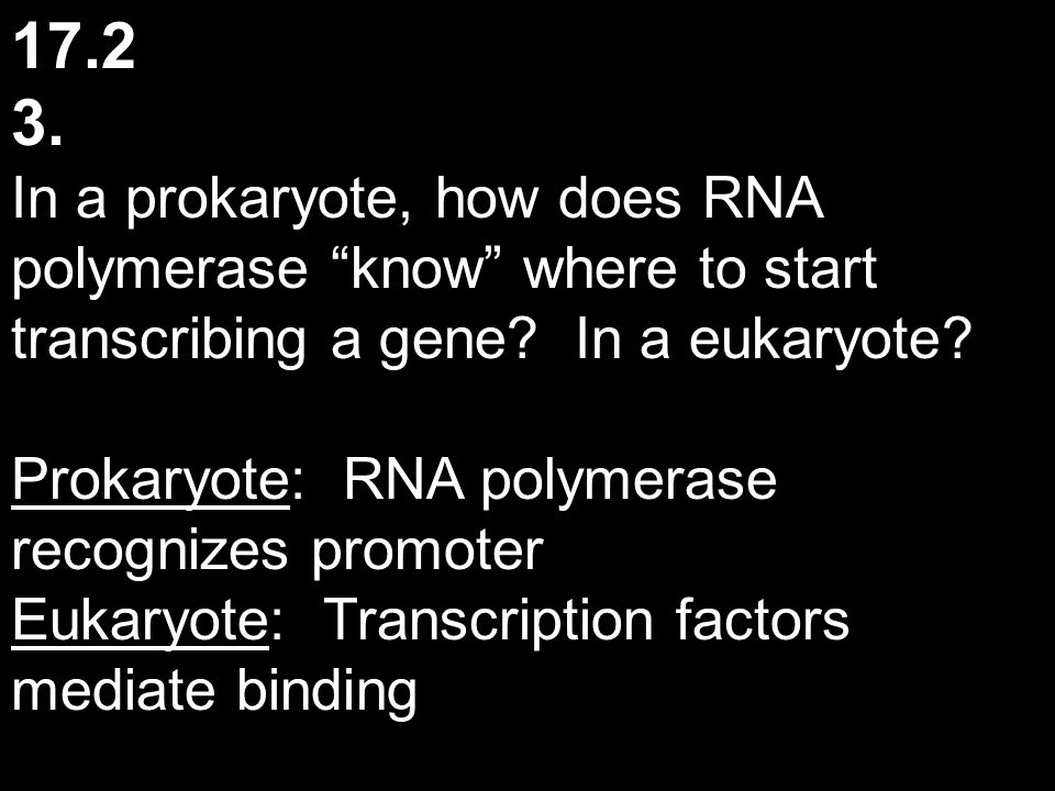 17.2 3. In a prokaryote, how does RNA polymerase know where to start transcribing a gene In a eukaryote