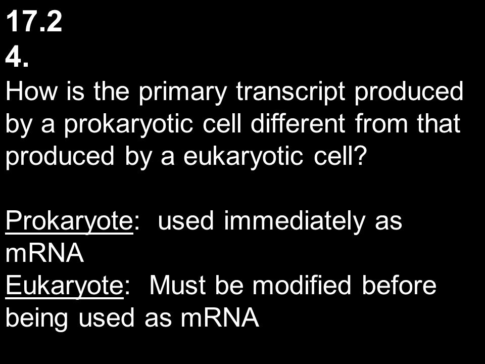 17.2 4. How is the primary transcript produced by a prokaryotic cell different from that produced by a eukaryotic cell