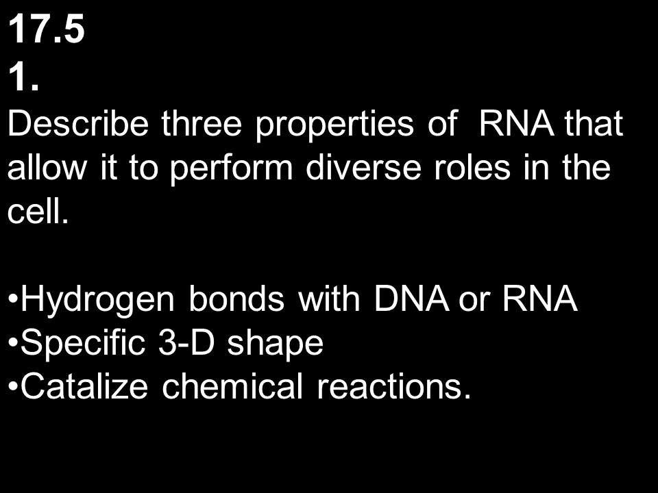 17.5 1. Describe three properties of RNA that allow it to perform diverse roles in the cell. Hydrogen bonds with DNA or RNA.