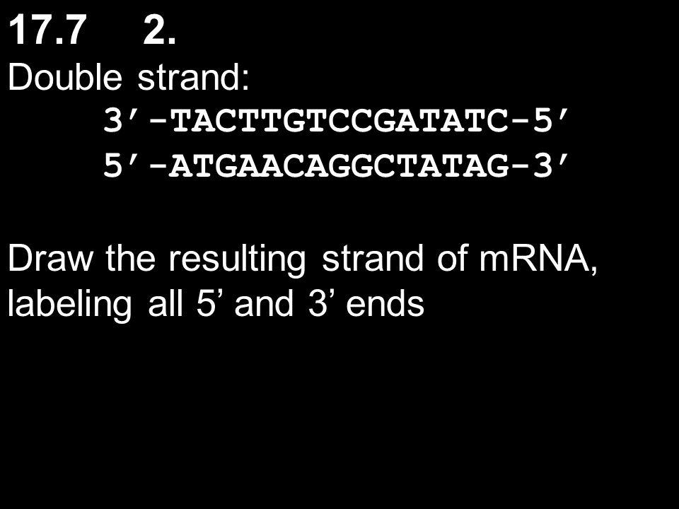 17.7 2. Double strand: 3'-TACTTGTCCGATATC-5' 5'-ATGAACAGGCTATAG-3'
