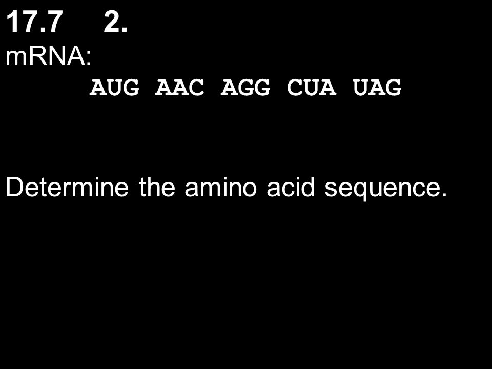17.7 2. mRNA: AUG AAC AGG CUA UAG Determine the amino acid sequence.