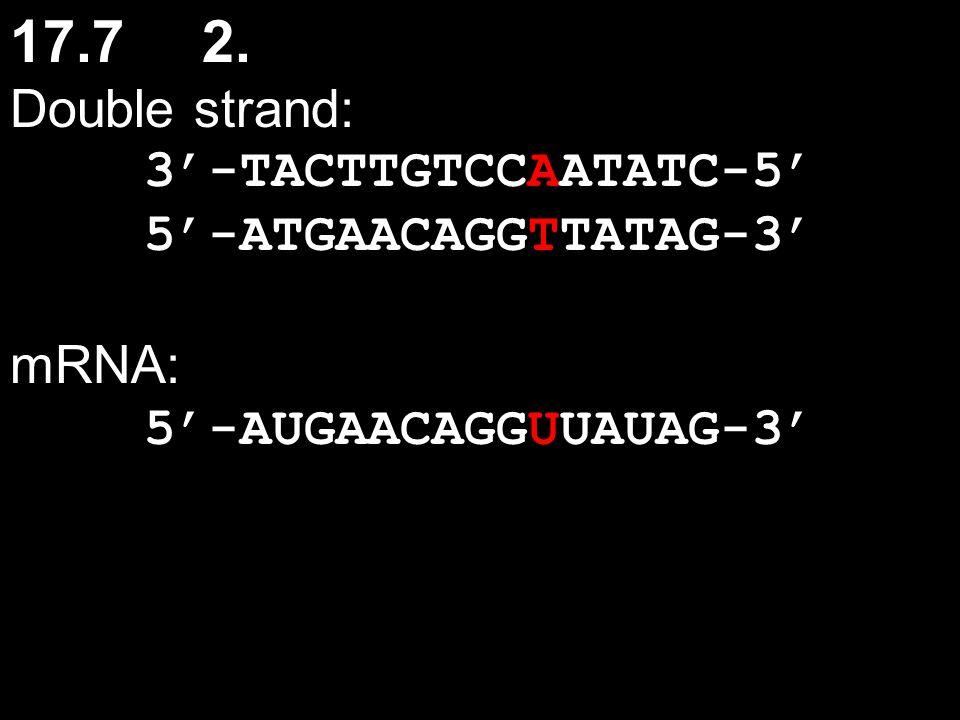 17.7 2. Double strand: 3'-TACTTGTCCAATATC-5' 5'-ATGAACAGGTTATAG-3'