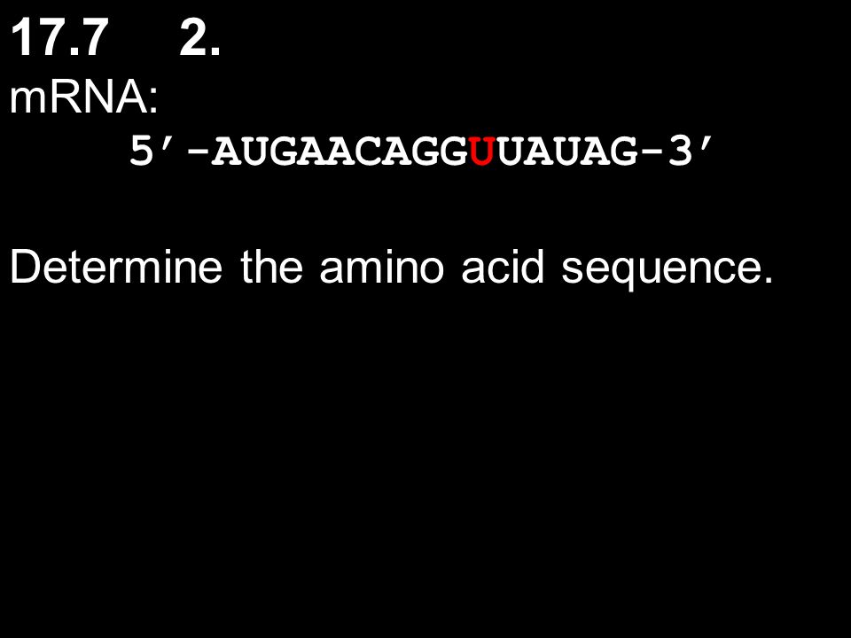 17.7 2. mRNA: 5'-AUGAACAGGUUAUAG-3' Determine the amino acid sequence.