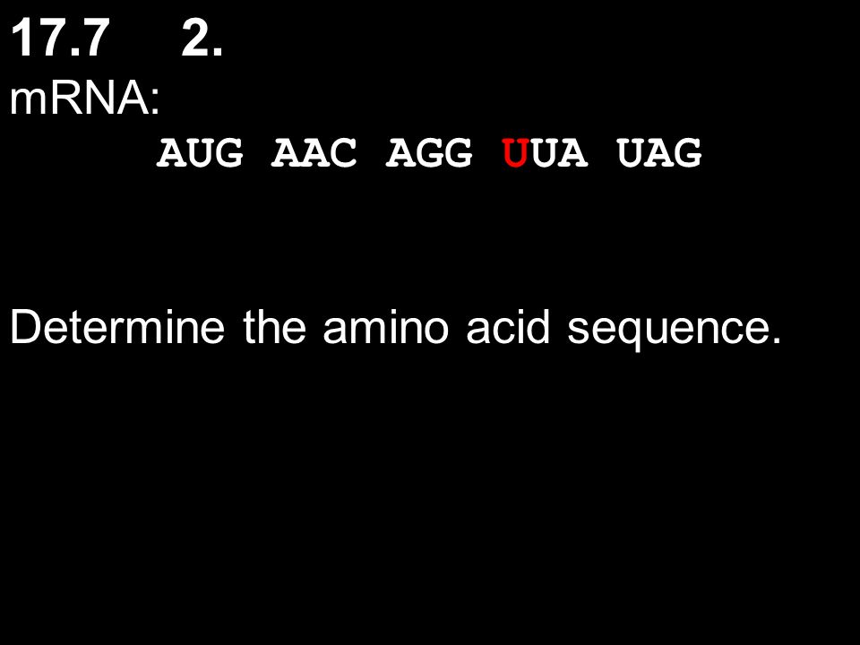 17.7 2. mRNA: AUG AAC AGG UUA UAG Determine the amino acid sequence.