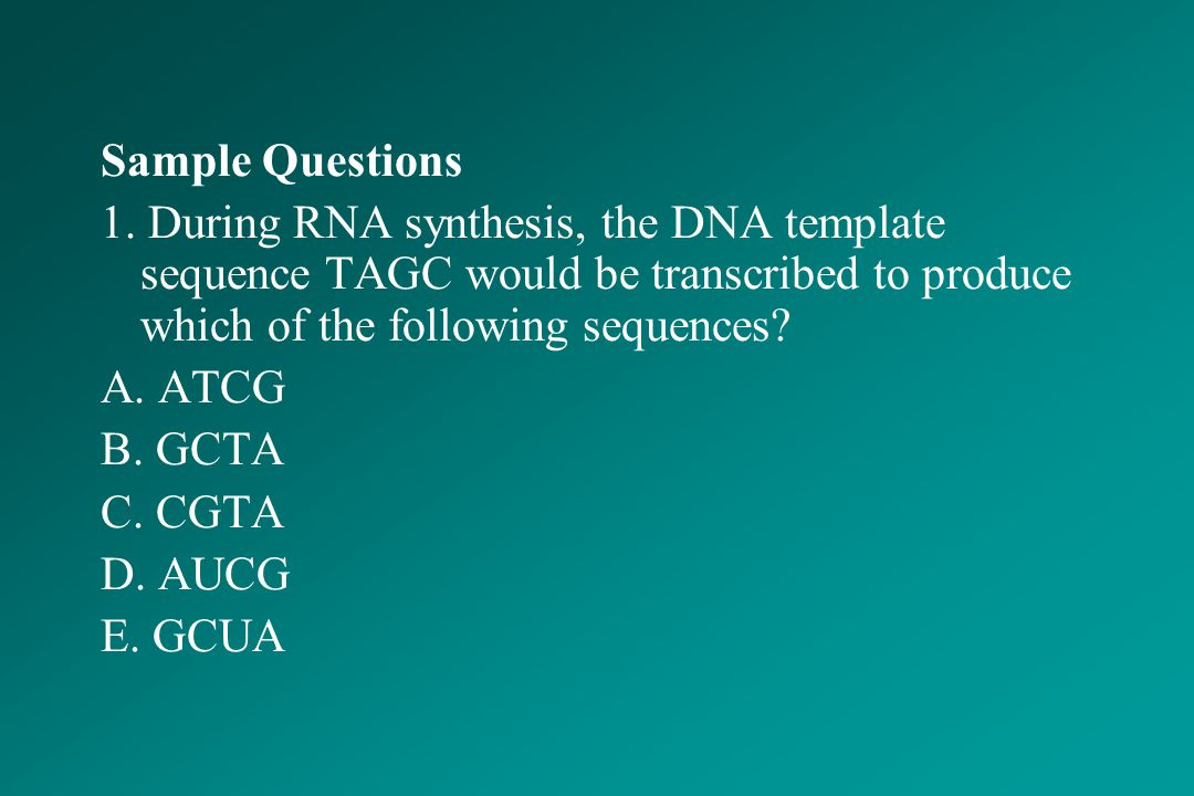 Sample Questions 1. During RNA synthesis, the DNA template sequence TAGC would be transcribed to produce which of the following sequences