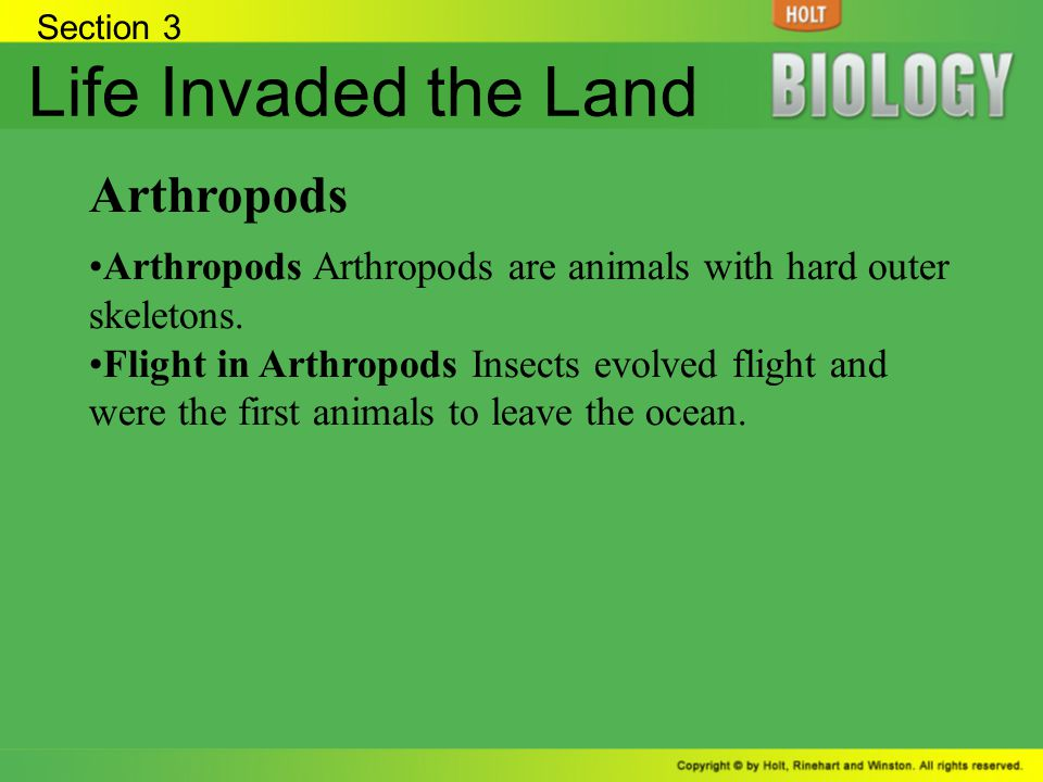 Life Invaded the Land Arthropods