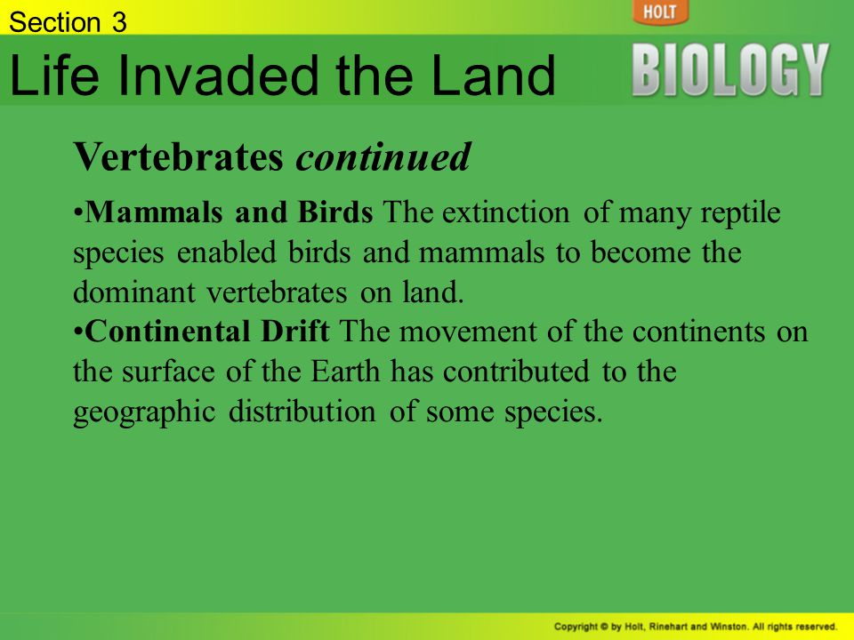 Life Invaded the Land Vertebrates continued