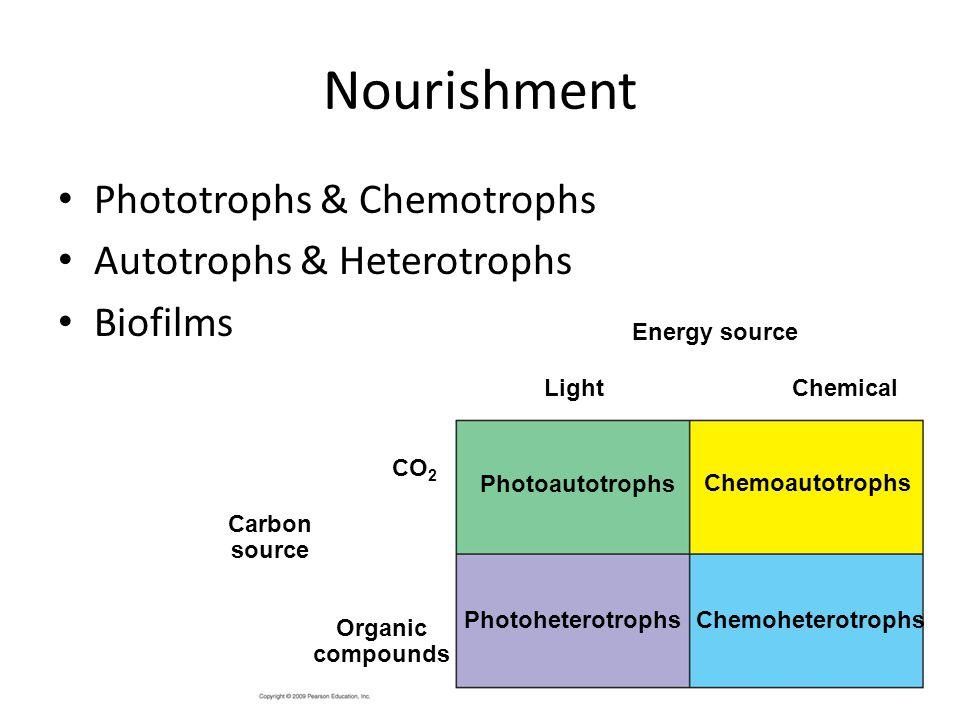 Nourishment Phototrophs & Chemotrophs Autotrophs & Heterotrophs
