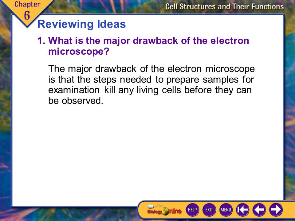 Reviewing Ideas 1. What is the major drawback of the electron microscope