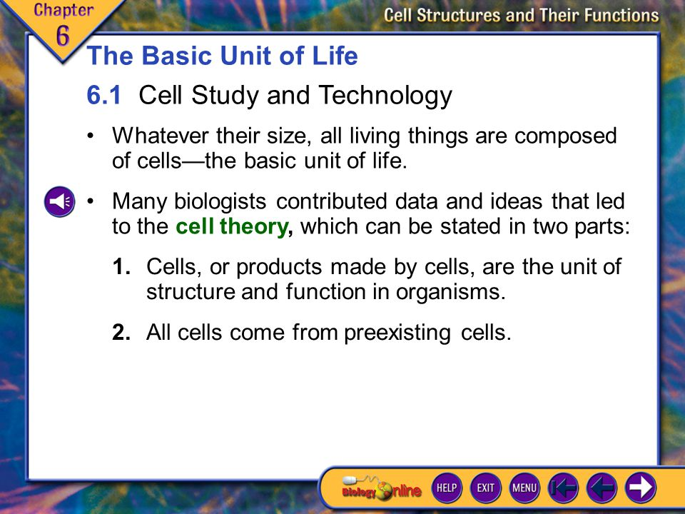 6.1 Cell Study and Technology 1
