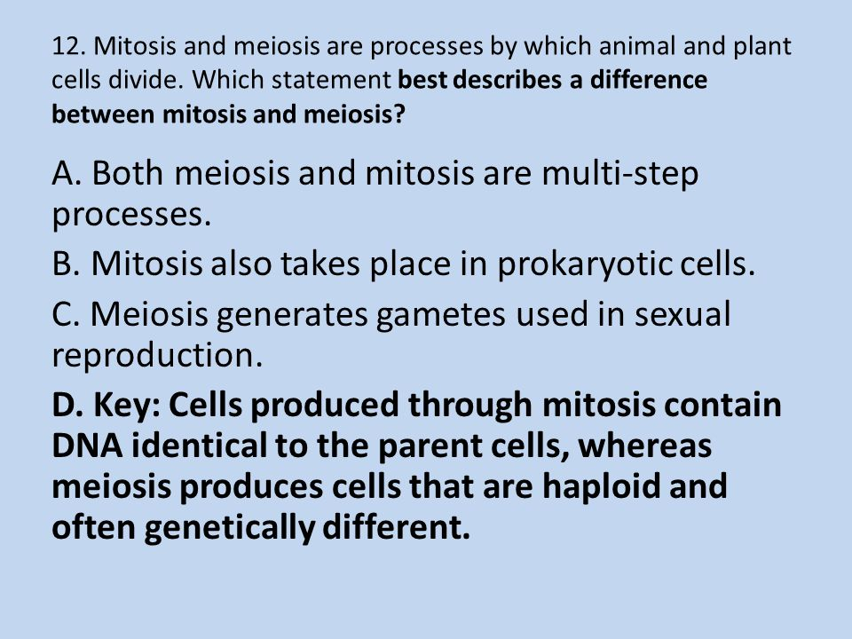 12. Mitosis and meiosis are processes by which animal and plant cells divide. Which statement best describes a difference between mitosis and meiosis