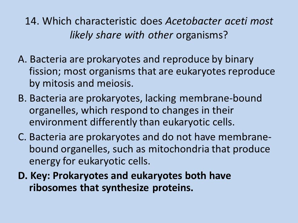 14. Which characteristic does Acetobacter aceti most likely share with other organisms