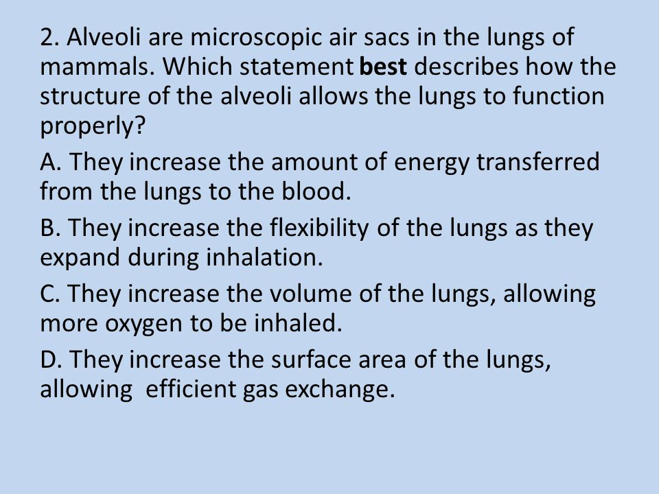 2. Alveoli are microscopic air sacs in the lungs of mammals