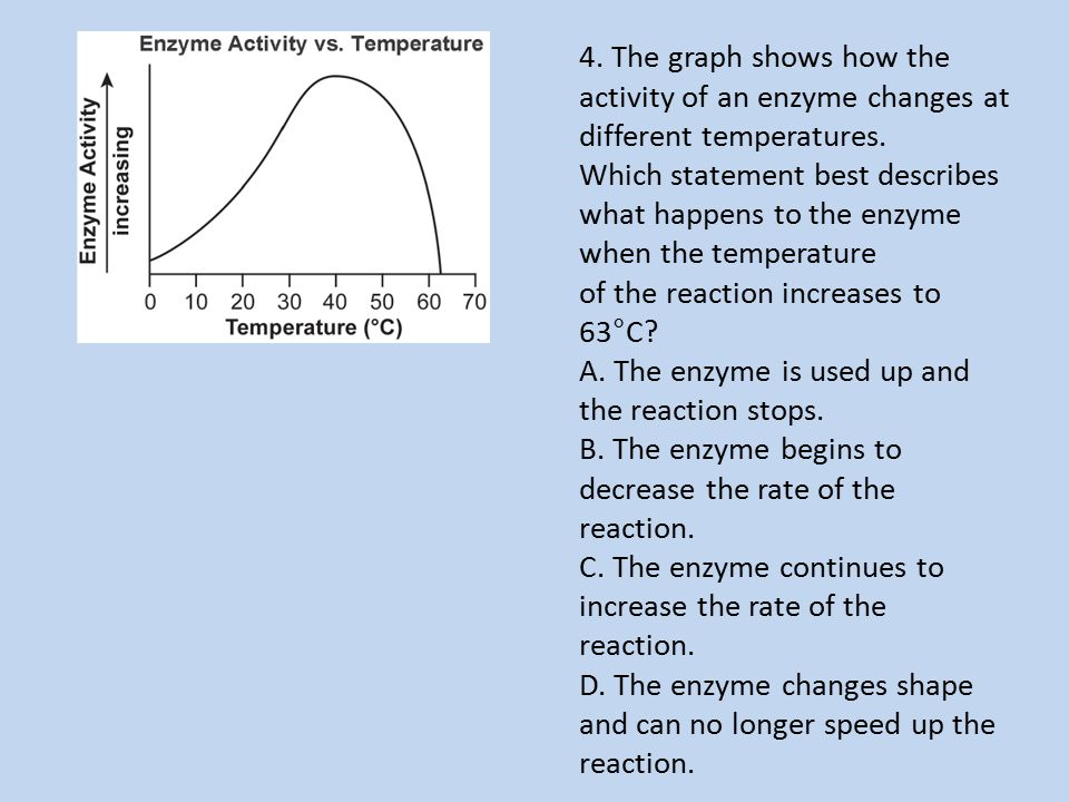 4. The graph shows how the activity of an enzyme changes at different temperatures.