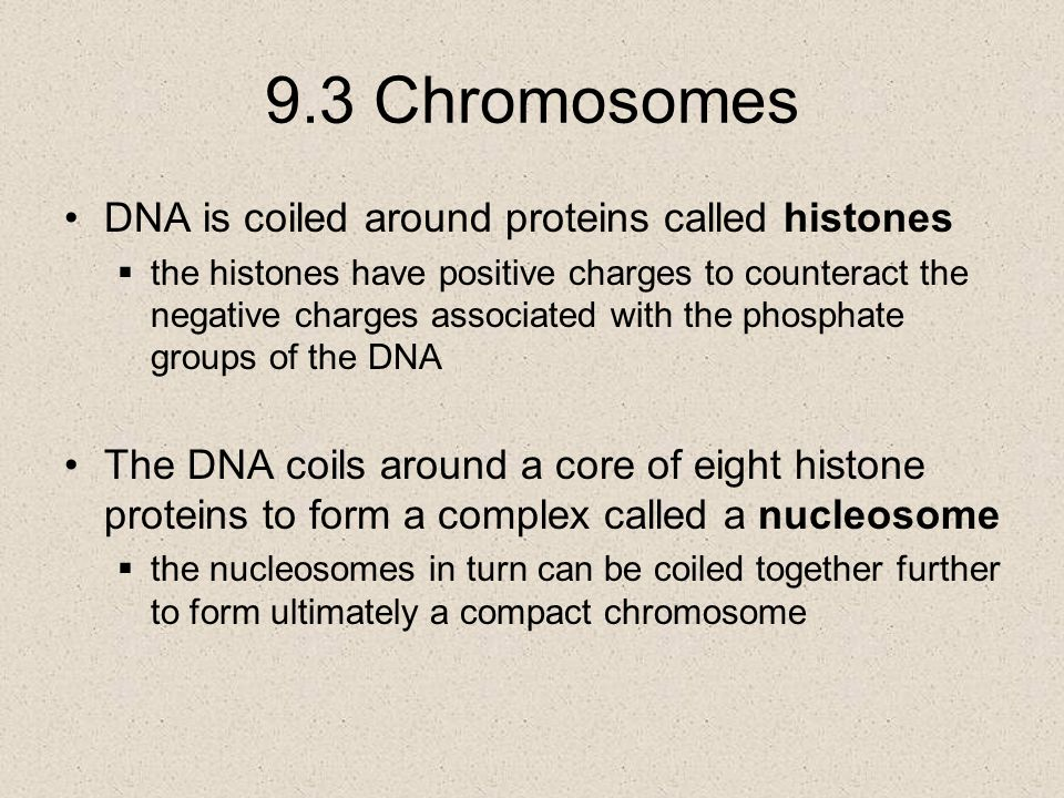 9.3 Chromosomes DNA is coiled around proteins called histones
