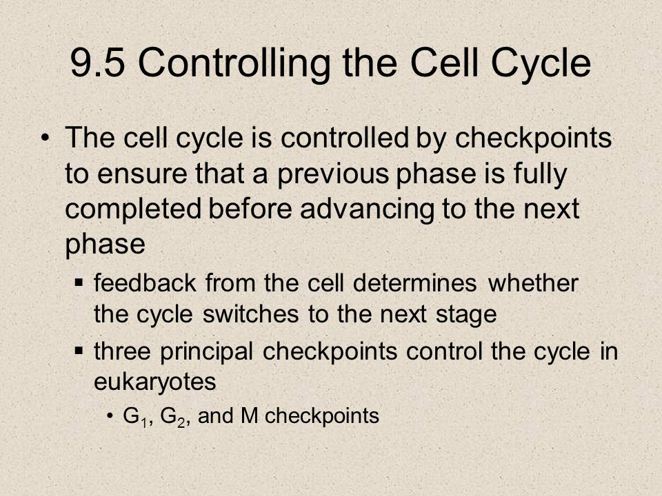9.5 Controlling the Cell Cycle