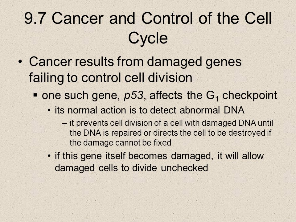 9.7 Cancer and Control of the Cell Cycle