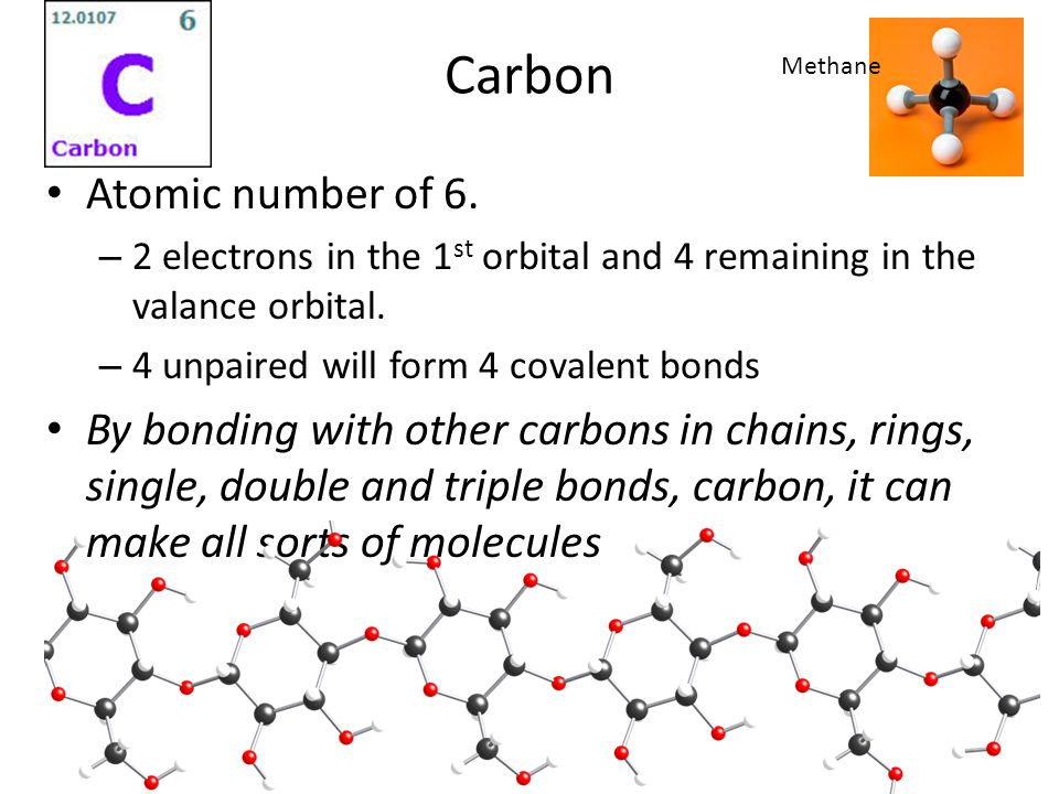 Carbon Atomic number of 6.