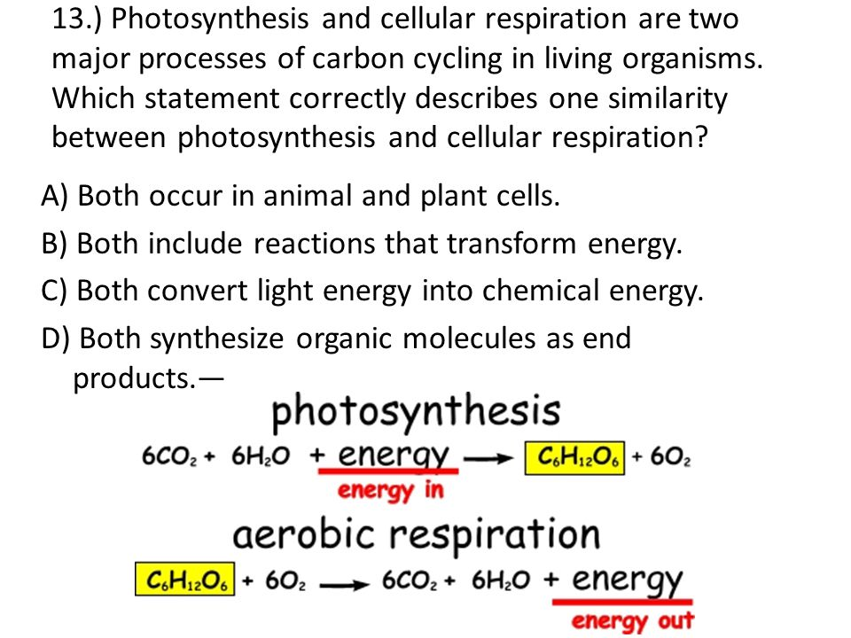 similarities of photosynthesis and cellular respiration