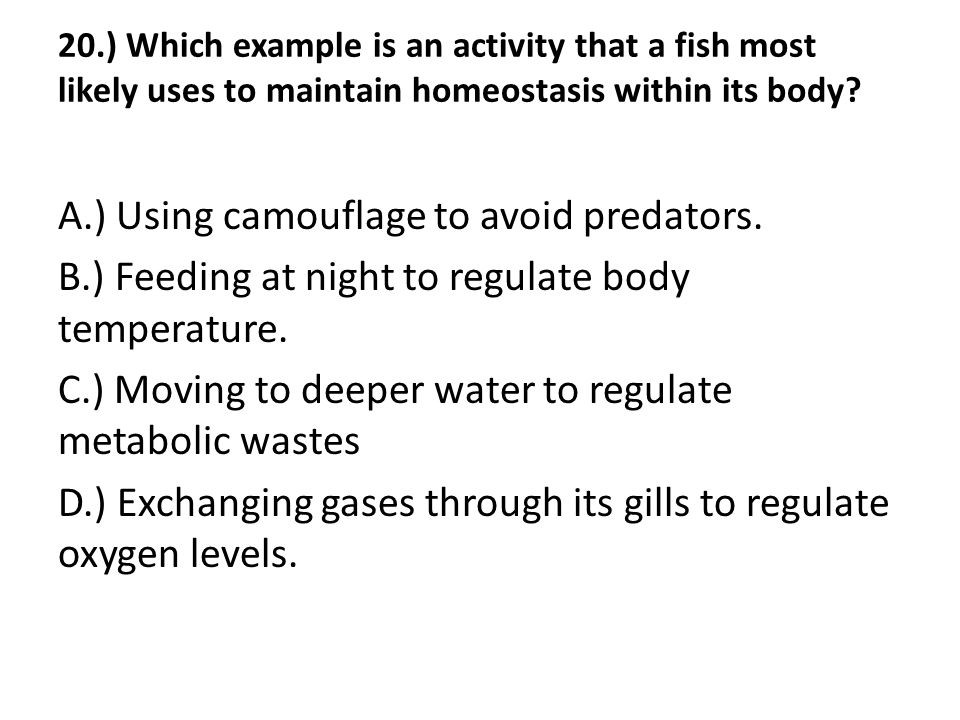 20.) Which example is an activity that a fish most likely uses to maintain homeostasis within its body