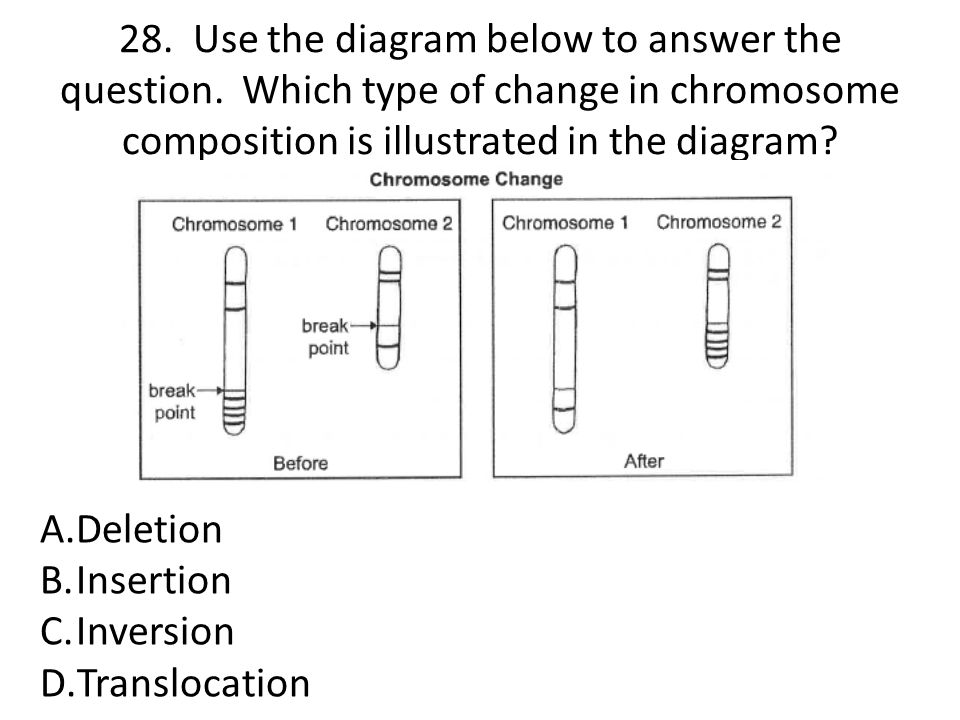 28. Use the diagram below to answer the question