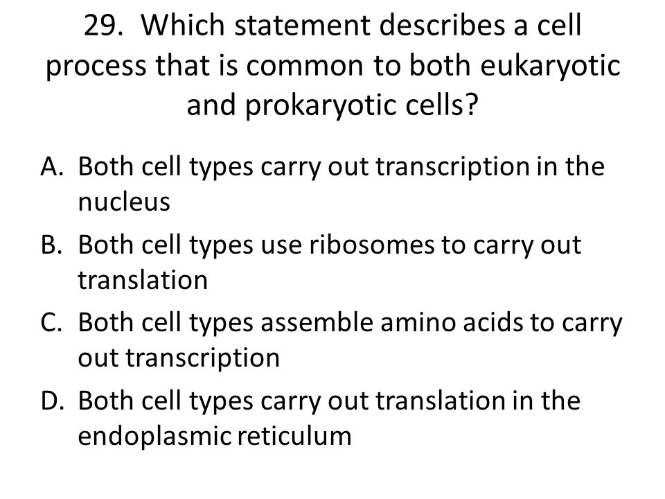 29. Which statement describes a cell process that is common to both eukaryotic and prokaryotic cells