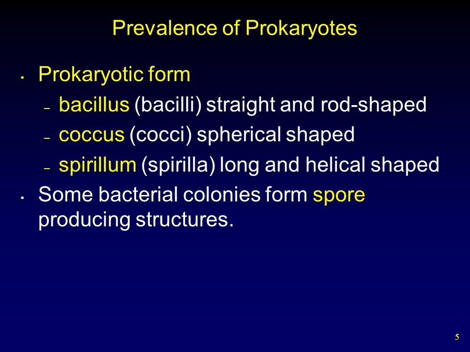 Prevalence of Prokaryotes