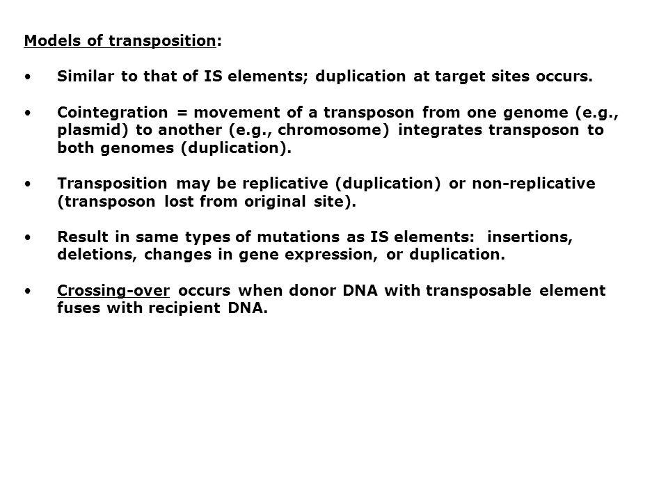 Models of transposition: