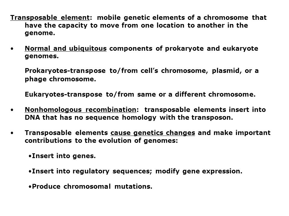 Transposable element: mobile genetic elements of a chromosome that have the capacity to move from one location to another in the genome.
