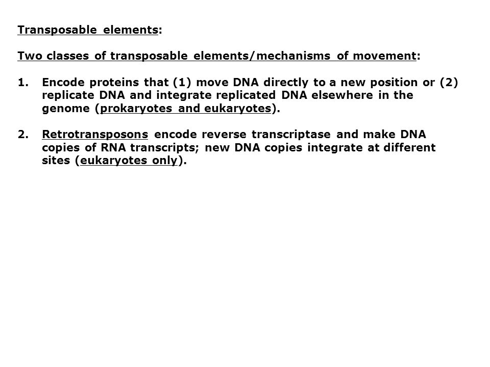 Transposable elements: