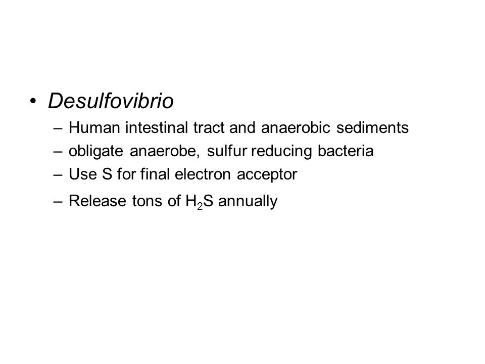 Desulfovibrio Human intestinal tract and anaerobic sediments