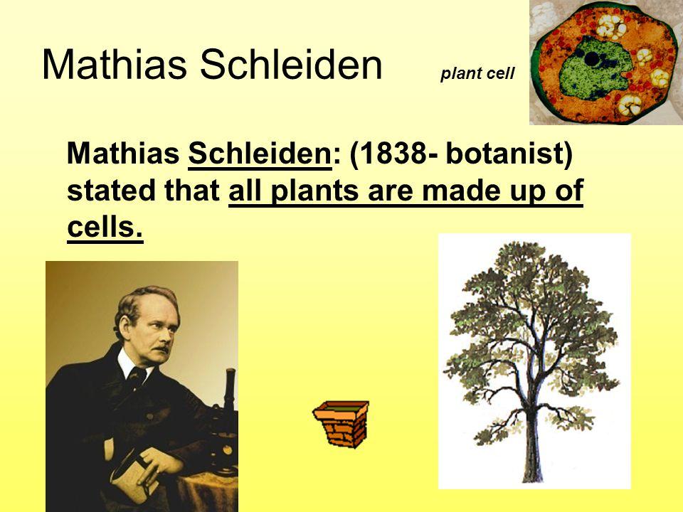 Mathias Schleiden plant cell