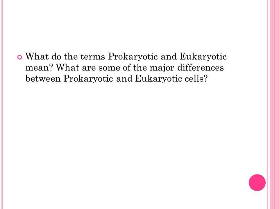 What do the terms Prokaryotic and Eukaryotic mean