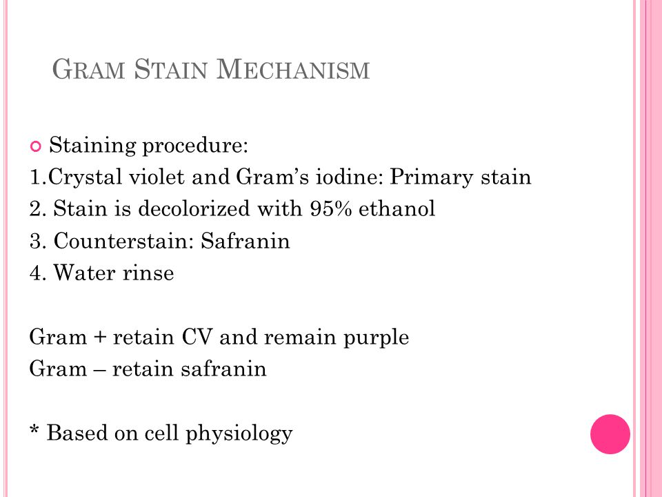Gram Stain Mechanism Staining procedure: